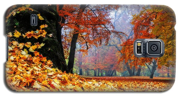 Autumn In The Woodland Galaxy S5 Case