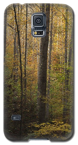 Autumn In The Woods Galaxy S5 Case