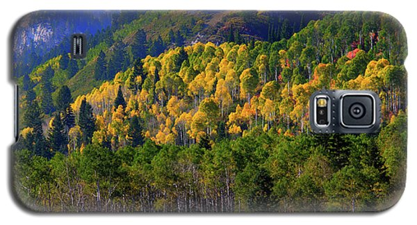 Autumn In Utah Galaxy S5 Case