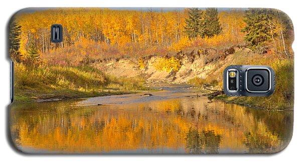 Autumn In Whitemud Ravine Galaxy S5 Case by Jim Sauchyn