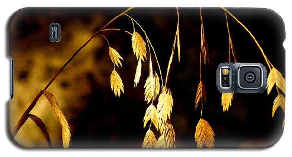Autumn Jewelery Galaxy S5 Case by Joe Jake Pratt