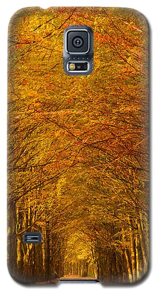 Autumn Lane In An Orange Forest Galaxy S5 Case