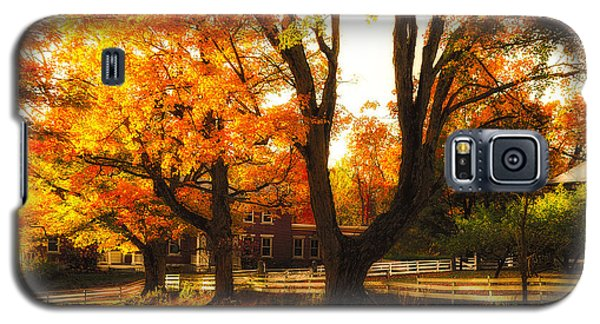 Galaxy S5 Case featuring the photograph Autumn Lane by Robert Clifford