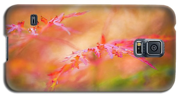 Autumn Leaf Abstract Galaxy S5 Case