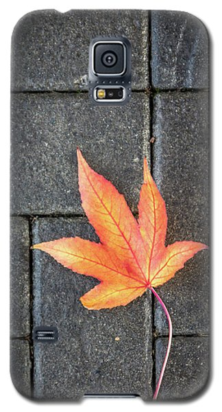 Autumn Leaf Galaxy S5 Case