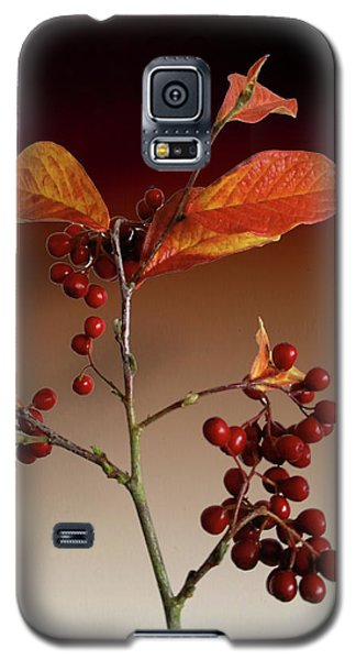 Galaxy S5 Case featuring the photograph Autumn Leafs And Red Berries by David French