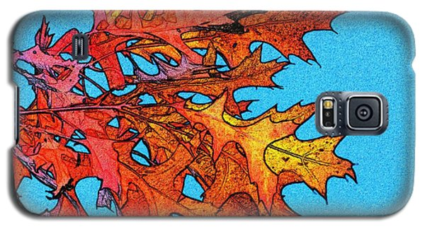 Autumn Leaves 14 Galaxy S5 Case