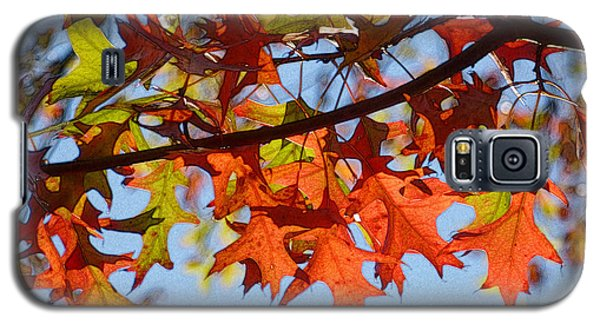 Autumn Leaves 16 Galaxy S5 Case