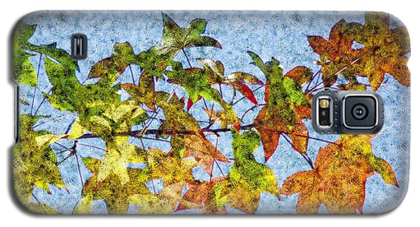 Galaxy S5 Case featuring the photograph Autumn Leaves 2 by Jean Bernard Roussilhe