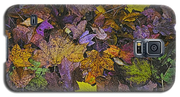 Autumn Leaves At Side Of Road Galaxy S5 Case by John Hansen