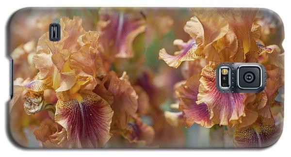 Autumn Leaves Irises In Garden Galaxy S5 Case