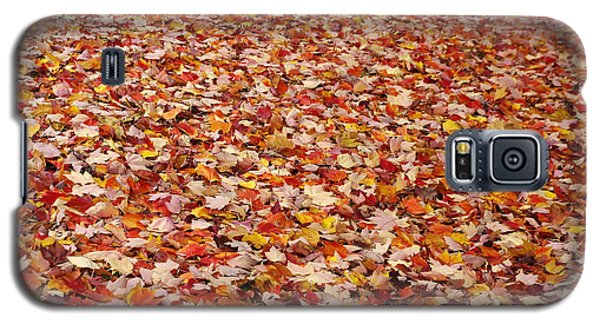 Autumn Leaves Galaxy S5 Case by Marilyn Wilson