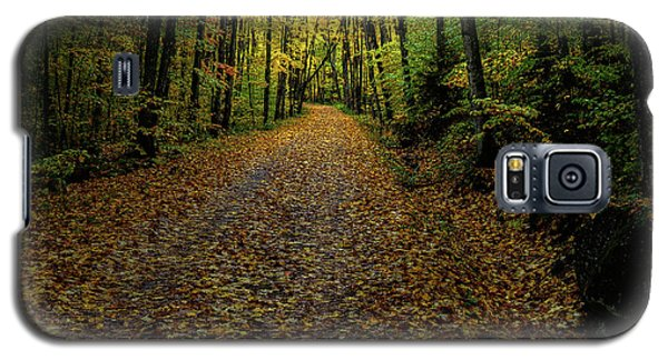 Galaxy S5 Case featuring the photograph Autumn Leaves On The Trail by David Patterson