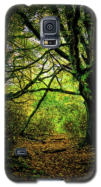 Galaxy S5 Case featuring the photograph Autumn Light by David Patterson