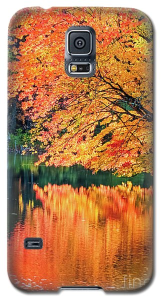 Autumn Magic Galaxy S5 Case