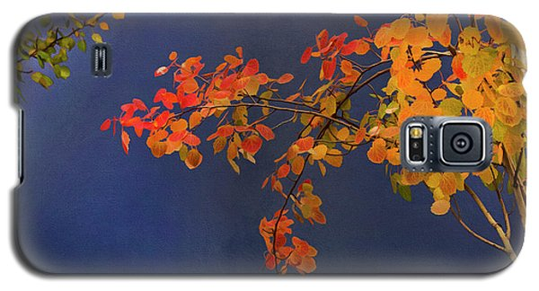 Autumn Matinee Galaxy S5 Case by Theresa Tahara