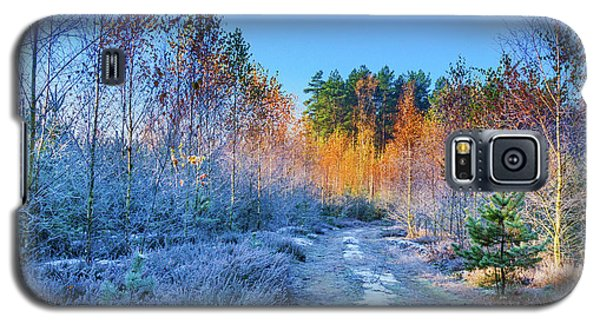 Autumn Meets Winter Galaxy S5 Case