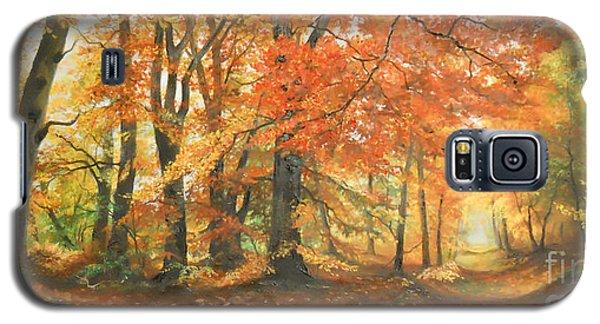 Autumn Mirage Galaxy S5 Case by Sorin Apostolescu
