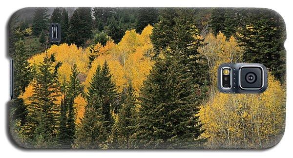 Autumn Mist, Owyhee Mountains Galaxy S5 Case