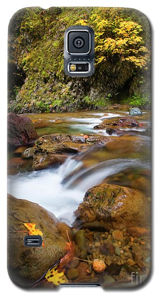 Galaxy S5 Case featuring the photograph Autumn Moment by Mike Dawson