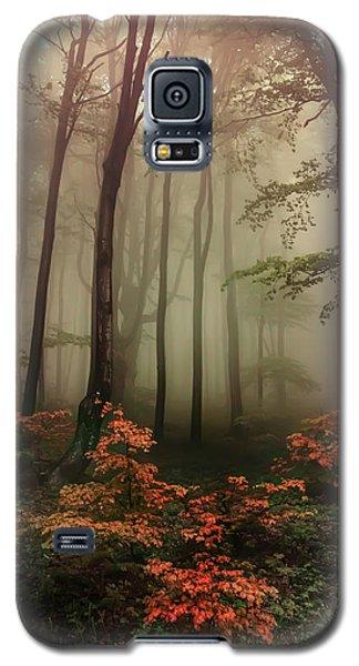 Autumn Mornin In Forgotten Forest Galaxy S5 Case