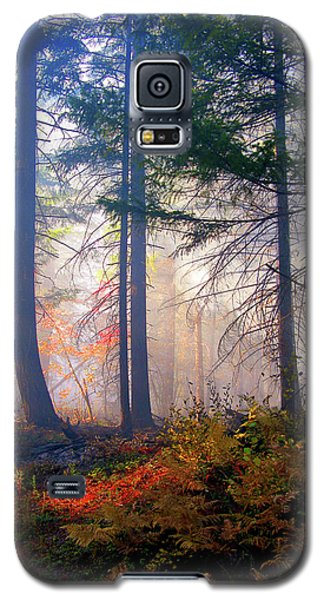 Autumn Morning Fire And Mist Galaxy S5 Case