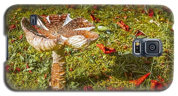 Autumn Mushroom Galaxy S5 Case