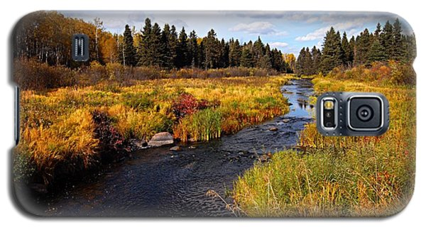 Autumn On Jackfish Creek Galaxy S5 Case