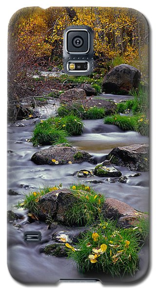 Autumn On Mill Creek Galaxy S5 Case