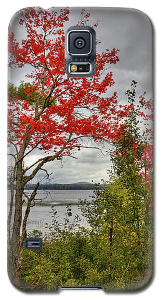 Galaxy S5 Case featuring the photograph Autumn On Raquette Lake by David Patterson