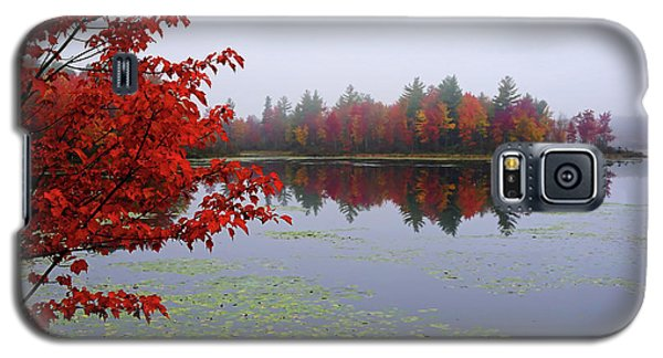 Autumn On The Bellamy Galaxy S5 Case