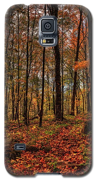 Autumn On The Ice Age Trail Galaxy S5 Case