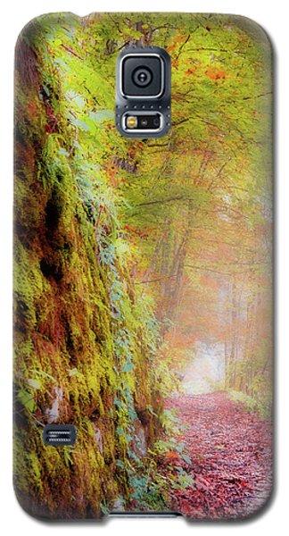 Autumn Path Galaxy S5 Case