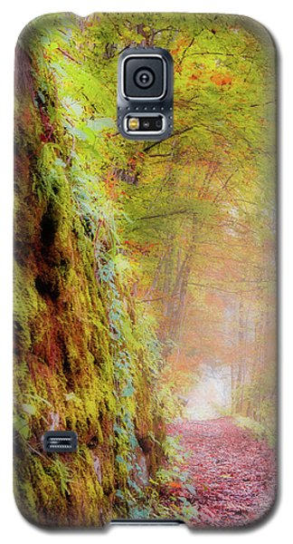 Autumn Path Galaxy S5 Case