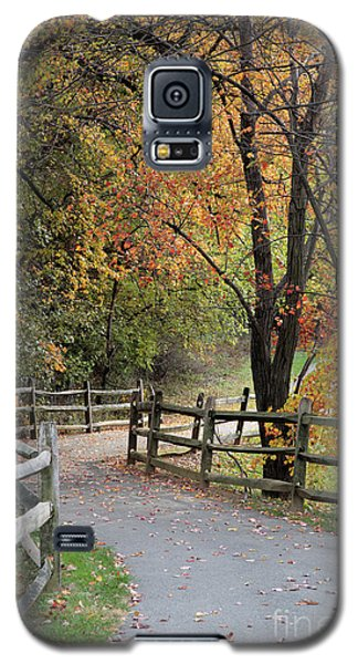 Autumn Path In Park In Maryland Galaxy S5 Case