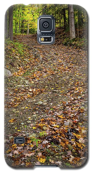 Galaxy S5 Case featuring the photograph Autumn Pathway by Dale Kincaid
