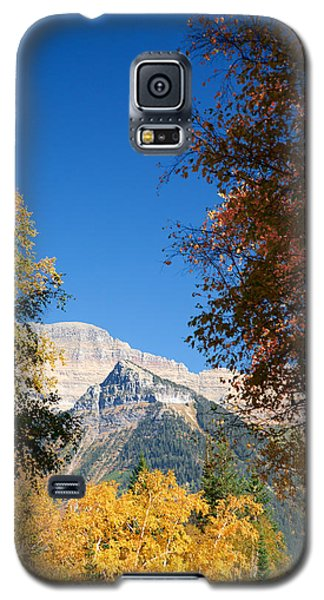 Autumn Peaks Galaxy S5 Case