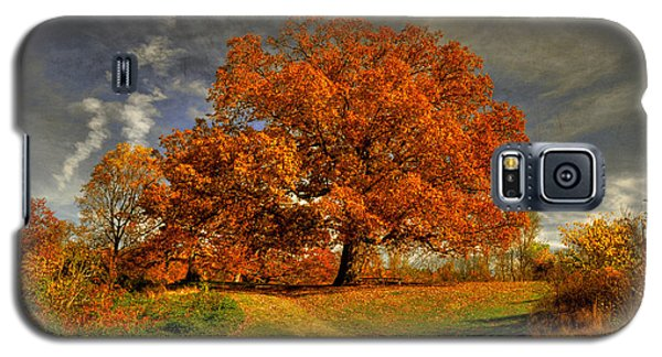 Autumn Picnic On The Hill Galaxy S5 Case