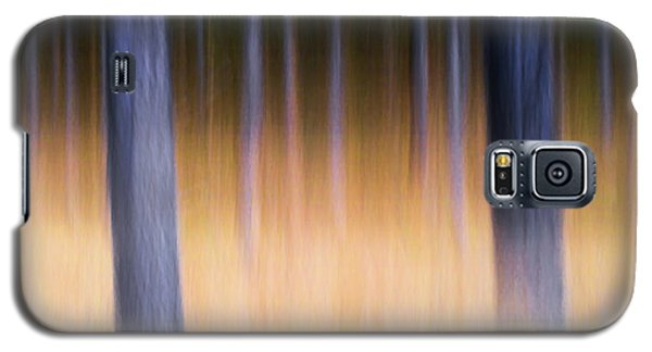 Galaxy S5 Case featuring the photograph Autumn Pine Forest Abstract by Dirk Ercken