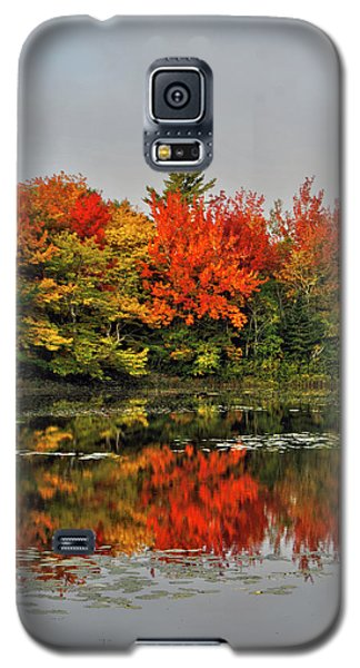 Galaxy S5 Case featuring the photograph Autumn Portrait by Kathleen Sartoris