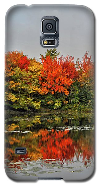Autumn Portrait Galaxy S5 Case by Kathleen Sartoris