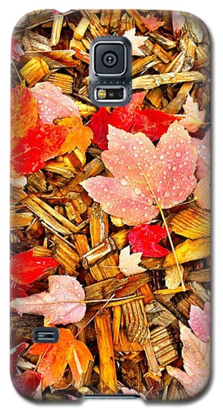 Autumn Potpourri Galaxy S5 Case