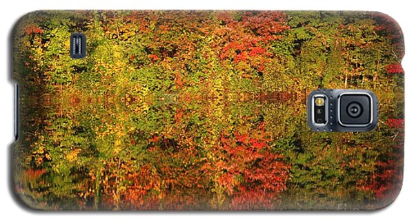 Autumn Reflections In A Pond Galaxy S5 Case by Smilin Eyes  Treasures