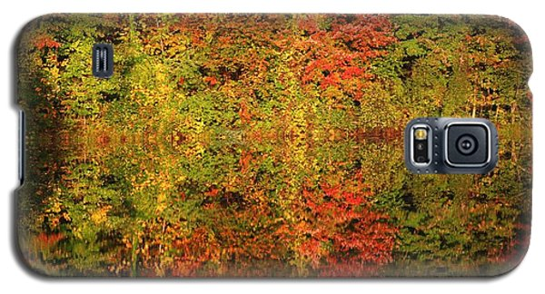 Autumn Reflections In A Pond Galaxy S5 Case