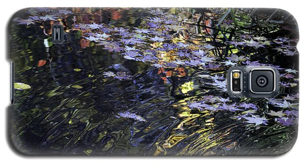 Autumn Ripples Galaxy S5 Case