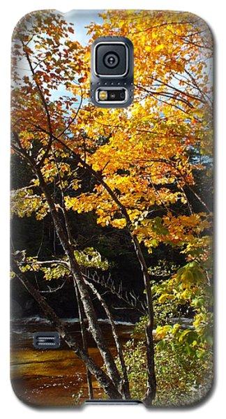 Autumn River Galaxy S5 Case