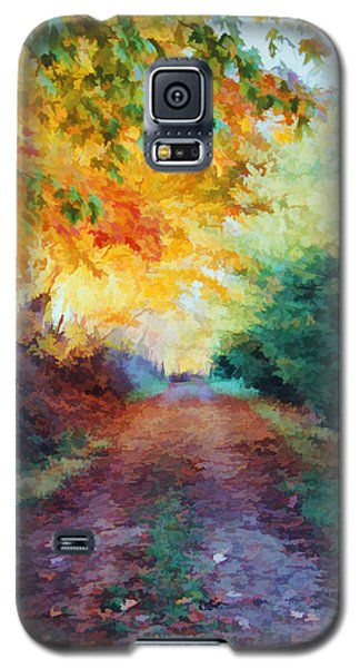 Galaxy S5 Case featuring the photograph Autumn Road by Diane Alexander