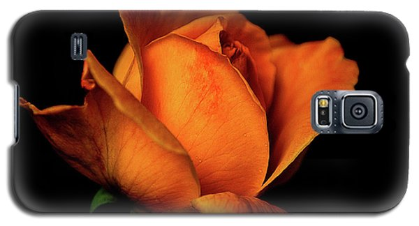 Galaxy S5 Case featuring the photograph Autumn Rose by Julie Palencia