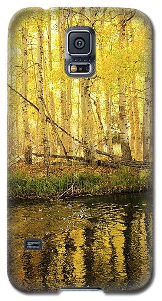 Autumn Soft Light In Stream Galaxy S5 Case