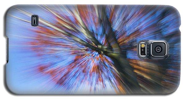 Autumn Splash Galaxy S5 Case